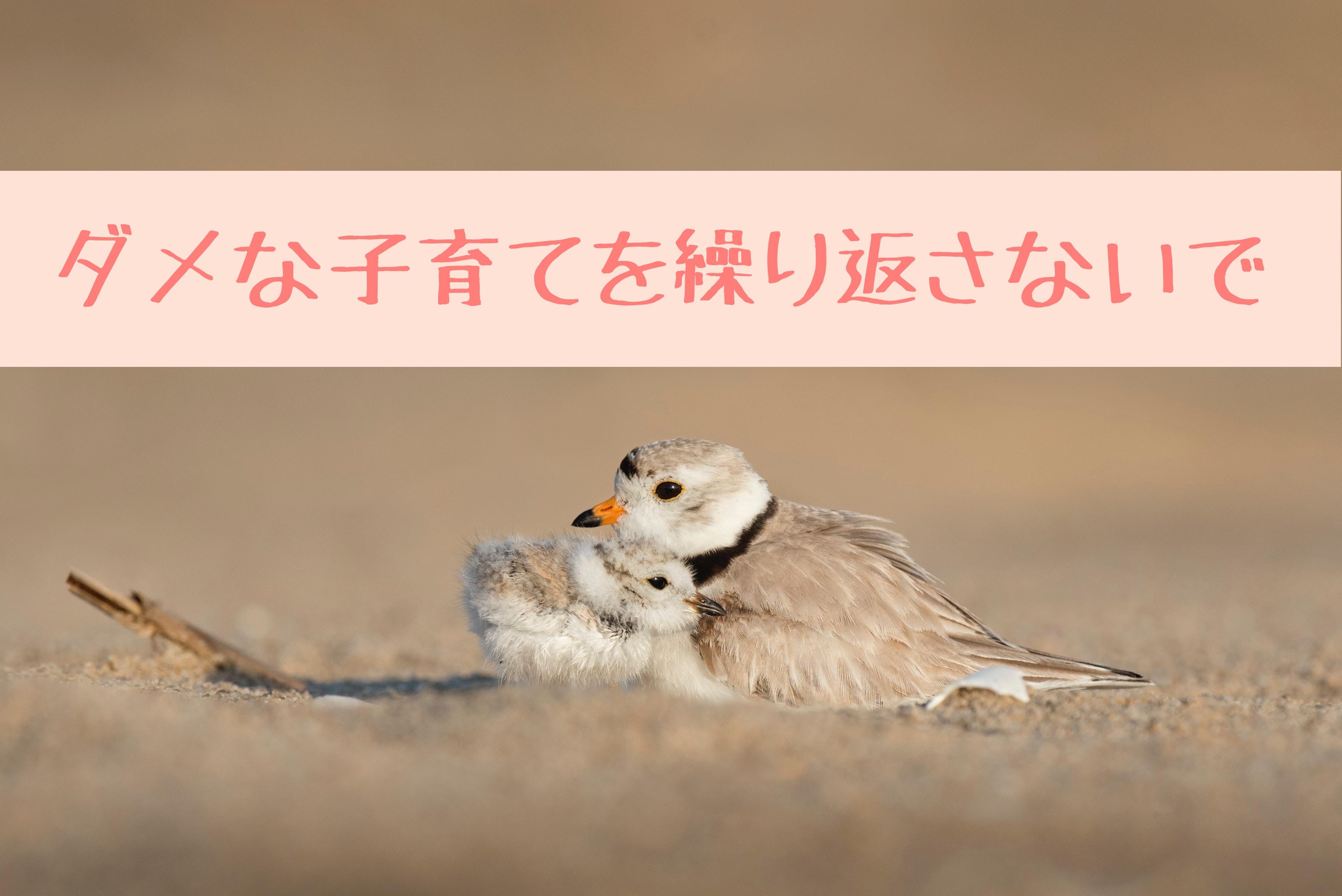 あなたらしい子育てをしよう〜東京・青山のカウンセリングるーむ はこにわサロン東京
